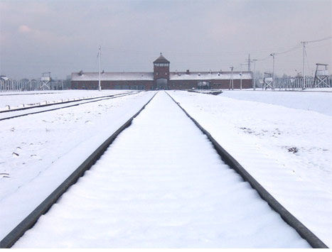 アウシュヴィッツ強制収容所の画像 p1_35