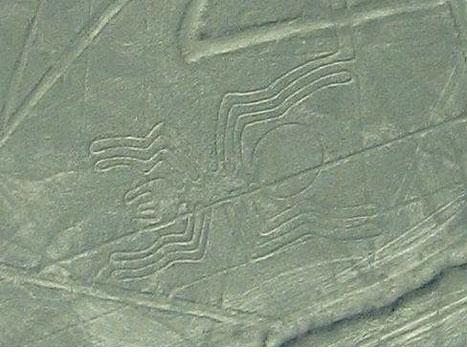 ナスカの地上絵の画像 p1_24